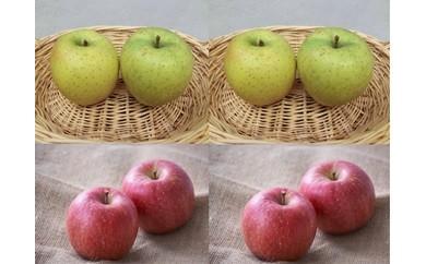 AV19 「数量限定品!!フルーツ王国余市産」ふじ/王林と自家製アップルパイの詰合せ【55pt】