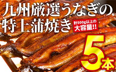 B-81 九州厳選うなぎの特上蒲焼き5本【計500g以上の大容量!!】