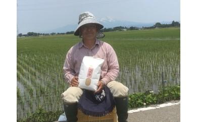 024 九代目又七の【玄米】有機つや姫5kg