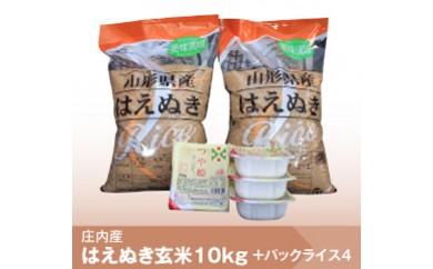 073 【29年産】玄米はえぬき10kg+つや姫パックライス4