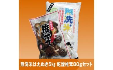 095 【29年産】無洗米はえぬき5kg+乾燥椎茸80gセット