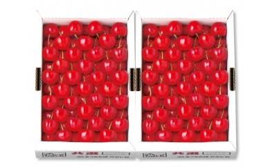 D010 山形県産 さくらんぼ(紅秀峰)特秀3Lサイズ700g×2 VN175-015