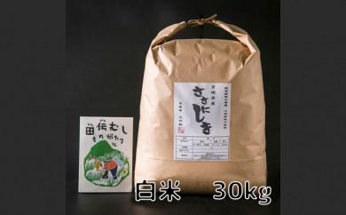 2018田伝むしのササニシキ白米30kg(農薬:栽培期間中不使用)