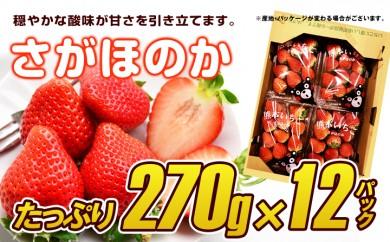 B572 さがほのか苺 12パック