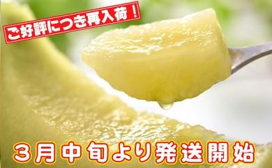 A-238 【春限定】志布志産高級メロン『秘蔵っ娘』白玉1個