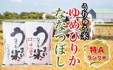 [B-05] うりゅう米食べくらべセット ※ゆめぴりか(5kg)1袋とななつぼし(5kg)1袋 H29年度
