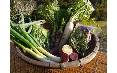[025005]季節の野菜セット(農薬化学肥料不使用)