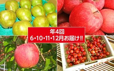 [№5922-0432]【年4回6・10・11・12月お届け!!】やまのべフルーツ定期便