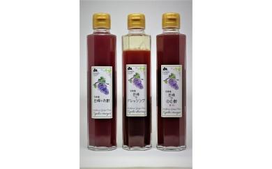 1-8 ぶどう農家「浅桑園」のこだわり巨峰のぶどう酢セット