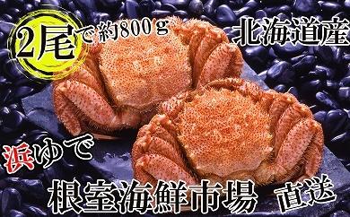CA-14078 根室海鮮市場<直送>北海道産浜茹で毛がに350~450g×2尾[430351]