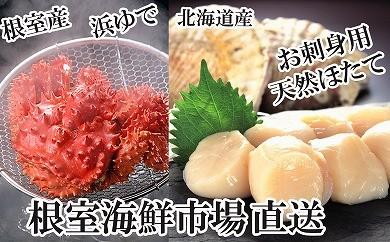 CA-22016 根室海鮮市場<直送>浜茹で花咲ガニ、刺身用天然ほたて[358316]