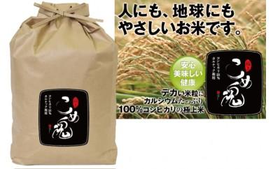 B-24 カルテック栽培米「極上こめ魂」5kg
