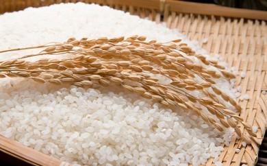 [№5792-0163]郷の有機使用特別栽培米ひとめぼれ 7kg