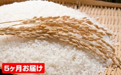 [№5792-0219]【5ヶ月連続お届け】郷の有機使用特別栽培米ひとめぼれ 7kg
