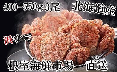CD-14045 根室海鮮市場<直送>北海道産浜ゆで毛ガニ400~550g×3尾[435721]