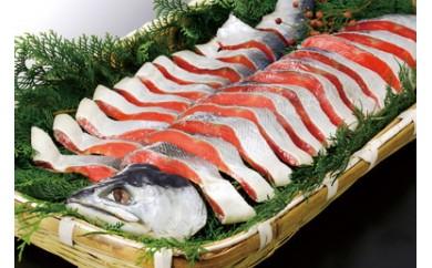 【B034】汐紅鮭切り身 1尾/約1.5kg