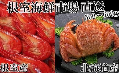 CD-14047 根室海鮮市場<直送>北海しまえび500g、浜ゆで毛ガニ500~650g[435723]