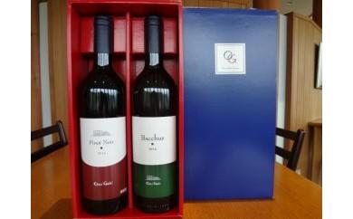 AQ09 赤白スペシャルセット・収穫量極少のワイン 赤白2本セット 【150pt】