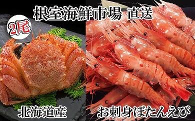 CD-14046 根室海鮮市場<直送>浜ゆで毛ガニ、お刺身ぼたんえび[435722]