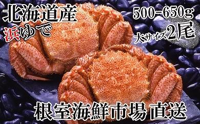 CD-14044 根室海鮮市場<直送>北海道産浜ゆで毛ガニ500~650g×2尾[435720]