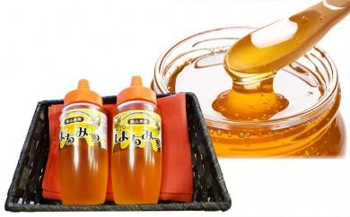 [№5823-0353]大江町採蜜のハチミツ600g(300g×2本)