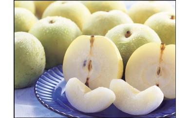 A-70 ふるさと旬の果物シリーズA 9月 二十世紀梨