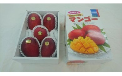 【BA03】沖縄県糸満産  完熟マンゴー約2kg