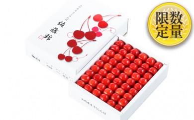 [№5805-1919]【先行予約】山形産さくらんぼ「佐藤錦」500g化粧箱