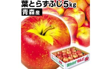B-151.葉とらずりんご「ふじ」5kg