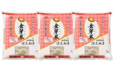 30A1013 はえぬき無洗米(金芽米)