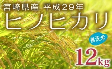 B-118【平成29年産 無洗米 ヒノヒカリ】宮崎県産米 12kg【5,000pt】