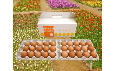 No.091 小川エッグの赤たまご30個 / 卵 タマゴ 玉子 新鮮 千葉県 人気