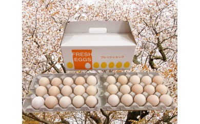 """No.092 匝瑳の""""さくら色""""たまご30個 / 卵 タマゴ 玉子 新鮮 千葉県 人気"""