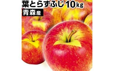 C-64.葉とらずりんご「ふじ」10kg
