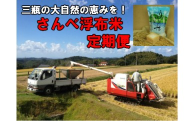 B212 さんべ浮布米(無洗米)定期便(5kg×2回お届け)