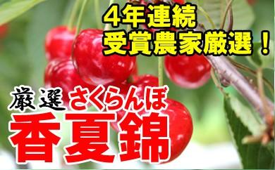 【先行予約】平成30年産さくらんぼ(香夏錦)1kg