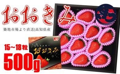 B223 高知県産苺 「おおきみ」