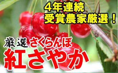 【先行予約】平成30年産さくらんぼ(紅さやか)1kg