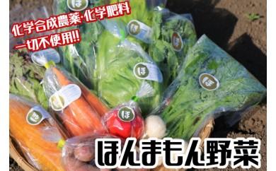 【A】完熟たい肥で育てるからおいしい!ほんまもん野菜セットA
