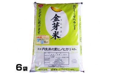 No.557 大分丹生米の里ヒノヒカリ金芽米(6袋)【50pt】