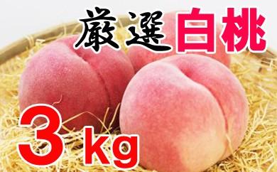 厳選品種・白桃3kg