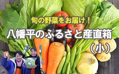HMG246 【旬の野菜をお届け】八幡平のふるさと産直箱(小)