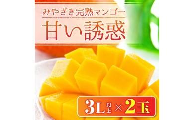 AC9 じゅわっと甘さ広がる★みやざき完熟マンゴー 甘い誘惑(3L以上×2玉)