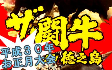 B-24 ≪H30お正月開催≫徳之島伝統闘牛大会DVD