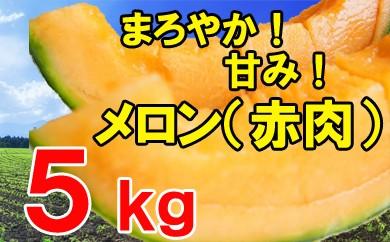 【先行予約】赤肉メロン(ご自宅用)5kg