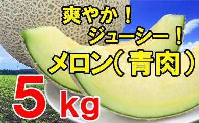 【先行予約】青肉メロン(ご自宅用)5kg