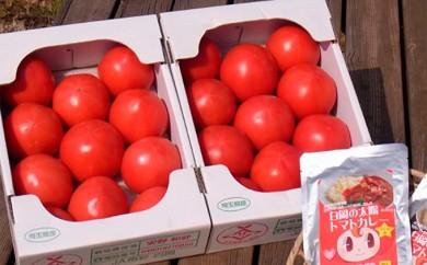 [№5672-0165]甘熟トマト『白岡の太陽』2キロ×2箱ご当地トマトカレー6食付き