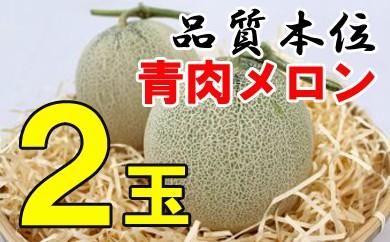 【先行予約】メロン(青肉)2玉