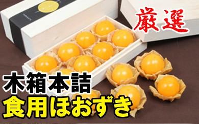 完熟ほおずき(生食)