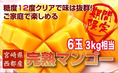B-42 ご家庭で楽しむお得な西都産完熟マンゴー(JA西都)  約3kg入